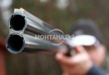 Глобиха с 1800 лева ловец, застрелял котка в Брусарци