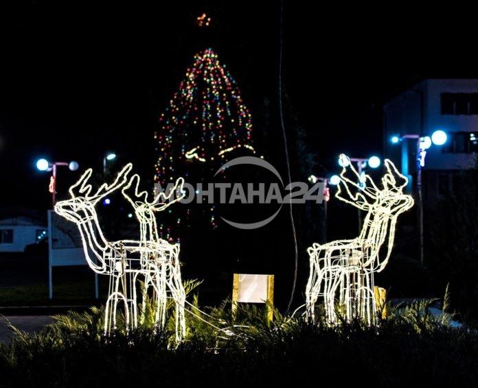 Коледаната украса в Чипровци