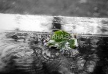 Времето през новата седмица - от слънце до дъжд