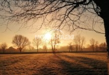 Слънчево, но относително студено през целия ден
