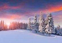"""Леночка Ангелова: """"Тази нощ зимата идва"""""""