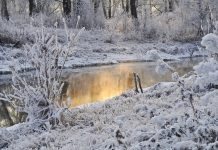 Мрачно и мразовито време в ни очаква в сряда