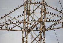 ЧЕЗ: Планирани прекъснания на тока за периода 12-16.03.2018