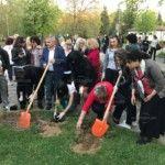 Алея със сто рози и гора от чинари, лирово дърво и кипарис засадиха 140 жени ГЕРБ, участващи във шестата политическа академия, която се провежда от петък до неделя във Вършец.