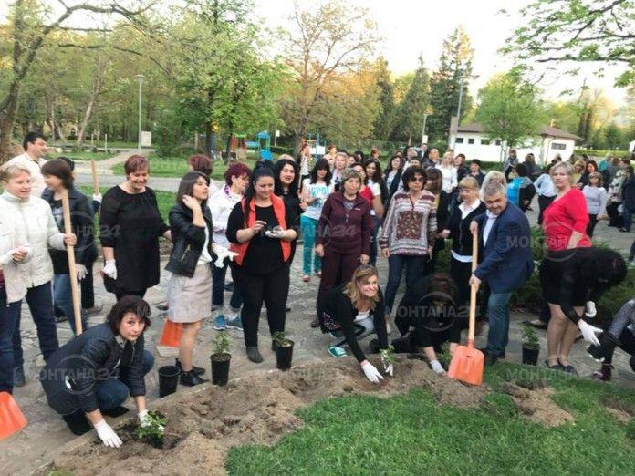 140 жени ГЕРБ засадиха гора във Вършец