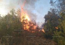 72-годишен мъж за малко да запали цяло берковско село