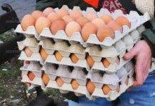 Заради птичи грип унищожават над 1 млн яйца у нас
