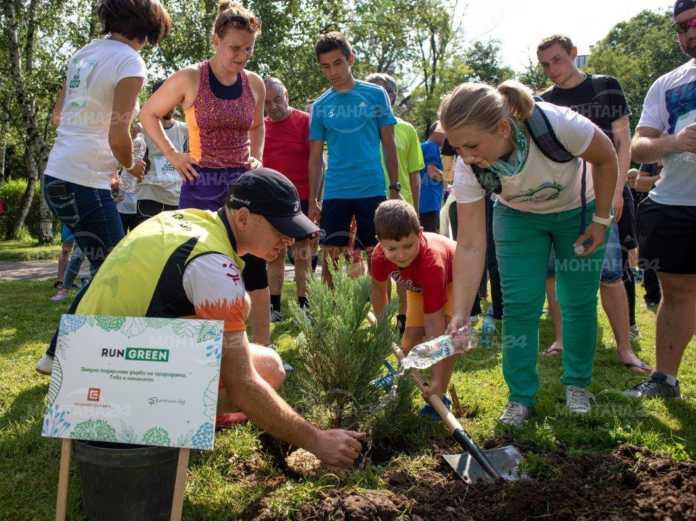 През октомври ЧЕЗ ще засади 366 дървета в Западна България