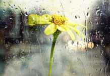 Синоптиците отново предупреждават за дъжд и градушки