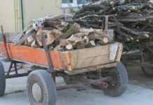 Полицията хвана пет каруци с незаконни дърва