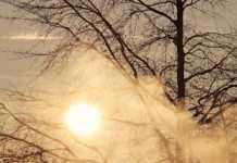 Слънчево време над региона в сряда