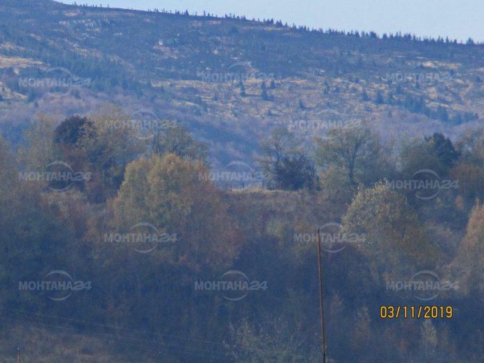 7 екипа на пожарната гасиха отново Чипровския балкан