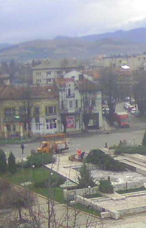 Силният вятър събори коледната елха в Берковица