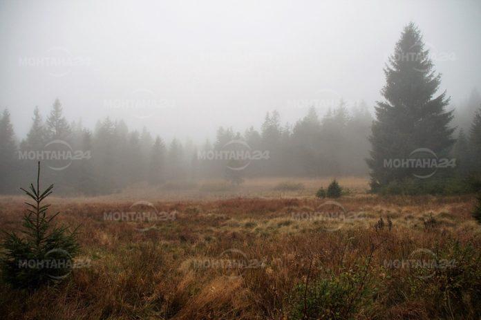 Отново облачно и мъгливо, с превалявания от дъжд