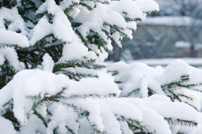 Какво време ни очаква през януари