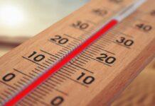 Над 40 градуса днес в региона