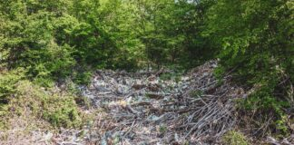Доброволци организират почистване на язовир Огоста